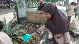 menyiram tanaman yang sudah ditanam